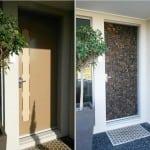 Renaza Feature Door